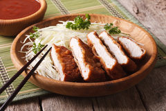 Japanese tonkatsu breaded deep fried pork with cabbage and sauce. Japanese breaded deep fried pork tonkatsu with cabbage and sauce closeup. horizontal royalty free stock image