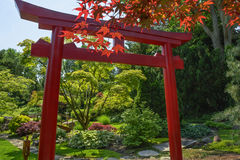 Japanese Tori Garden Stock Photo