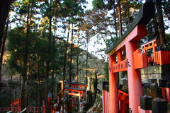 Japanese torii gates Royalty Free Stock Photo