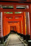 Japanese Torii (Shinto gates) Stock Photo