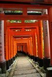 Japanese Torii (Shinto gates) Stock Photo