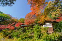 Japanese Tradiotional House Againts Garden Stock Photography