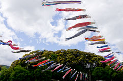 Japanese traditional colorful carp-shaped streamers. In Ohz, Ehime Royalty Free Stock Photo