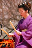 Japanese Traditional Drumming. A young Japanese woman demonstrates the traditional art of Taiko drumming at a cherry blossom festival Royalty Free Stock Images