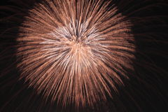 Japanese traditional fireworks in the night sky Royalty Free Stock Photo