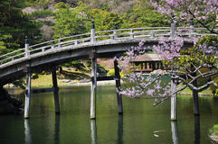 Japanese traditional garden, wooden bridge. Ritsurin traditional Japanese garden in Takamatsu, Shikoku, Japan. Pond with wooden bridge and spring blossom stock photo