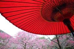 Japanese traditional red umbrella Stock Photos