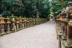 Japanese traditional stone lantern and forest road in Nara, Japan royalty free stock photos