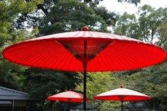 Japanese umbrella. Japanese style - red umbrella in green garden for green tea ceremony Stock Photos