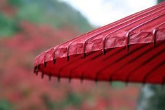 Japanese Umbrella. A bright red traditional umbrella in fall royalty free stock photo