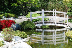 Japanese water garden Stock Photography