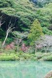 Japanese water garden Stock Photo