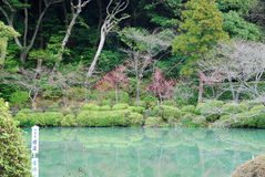 Japanese water garden Royalty Free Stock Photos