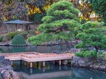 Japanese water garden in Tokyo stock images