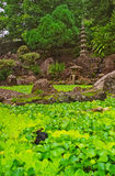 Japanese Water Garden Kepaniwai Park Maui, Hawaii Royalty Free Stock Photo