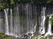 Japanese waterfall Shiraito. Powerful japanese waterfall Shiraito in springtime Royalty Free Stock Photo