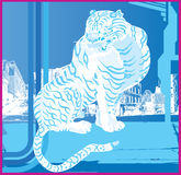Japanese White Tiger Acid Royalty Free Stock Photos