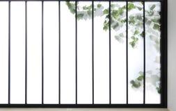 Japanese window. Japanese KOUSI(frame) ,SHOUJI (paper) and TATAMI(floor Stock Photo