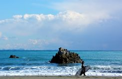 Japanese Winter Beach. This coast of Japan Kanagawa called Shonan Beach, every summer comes.It is a famous sandy beach bustling with many surfers royalty free stock image