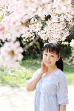 Japanese woman with cherry blossom. Portrait of young japanese woman with cherry blossom Royalty Free Stock Photos
