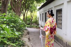 Traditional Asian Japanese beautiful bride Geisha woman wears kimono hold a white red umbrella in a summer nature garden. Japanese woman with kimono Japanese Royalty Free Stock Photos