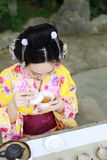 Traditional Asian Japanese beautiful Geisha woman wears kimono show tea art ceremony drink tea in a summer spring outdorr garden. Japanese woman with kimono Stock Images