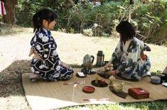 Japanese women making sado chanoyu or Japanese tea ceremony, also called the Way Stock Photo