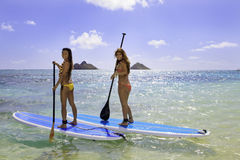 Free Japanese Women On Paddleboards Royalty Free Stock Photography - 19039677