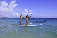 Japanese women on paddleboards Royalty Free Stock Image