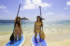 Japanese women on paddleboards Royalty Free Stock Images