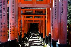 japanese wood entry in a park in tokyo stock image