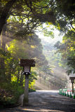 Japanese wood  lantern and stone pole in Meiji Jingu Shrine, str Stock Photos