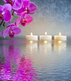 Japanese ZEN garden with candle lights. And orchid flower mirroring in water Stock Photos