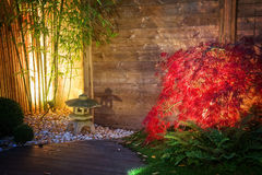 Japanese zen garden lightened by spot lights at night. Japanese stone lantern and red maple tree in a zen garden lightened by spot lights at night stock image
