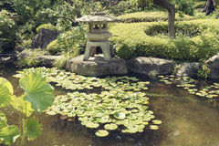 Japanese zen pond Royalty Free Stock Images