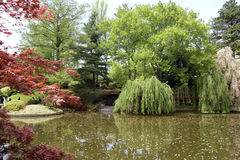 Japaneses garden Royalty Free Stock Photos