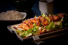 Japanesse food Stock Photography