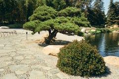Japanische Art-Garten-Weg Lizenzfreie Stockfotos
