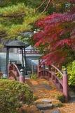Japanische Brücke stockbild