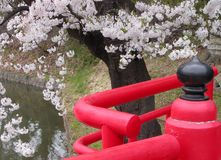 Japanische Frühlingsbrücke Stockfoto