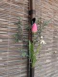 Japanische Frühlingsblumenanordnung Stockbilder