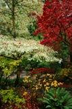 Japanische Gärten Stockbild