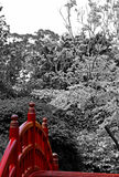 Japanische Gärten Lizenzfreie Stockbilder