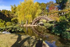 Japanische Garten-Brücke lizenzfreie stockfotos