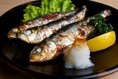 Japanische gegrillte Sardinen. Lizenzfreie Stockbilder
