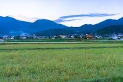 Japanische Landschaftslandschaft mit grünem Feld und Dorf Stockfotografie