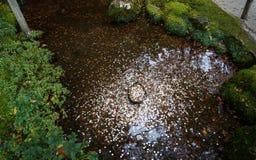 Japanische Münzen in einem Wunschbrunnen des Tempels stockfotografie
