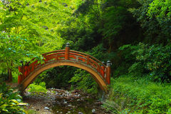 Japanische Naturszene mit Brücke Stockfotografie