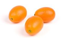Japanische Orange Lizenzfreie Stockbilder