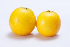 Japanische Orange Lizenzfreie Stockfotografie